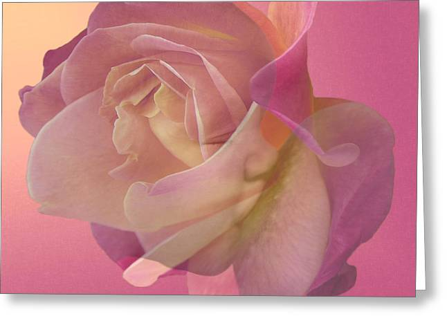 Floral Digital Art Digital Art Greeting Cards - Baby Girl Greeting Card by Torie Tiffany