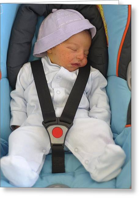 Children Only Greeting Cards - Baby In Car Seat Greeting Card by Photostock-israel