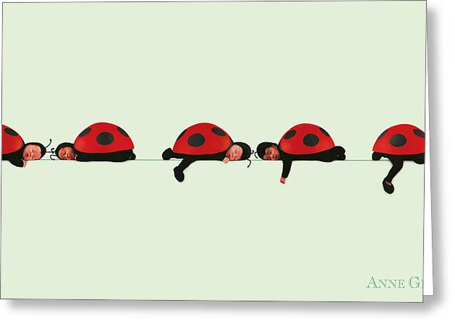 Bug Greeting Cards - Baby Lady Bugs Greeting Card by Anne Geddes
