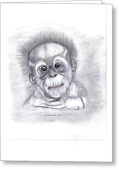 Orangutan Drawings Greeting Cards - Baby Orangutan Greeting Card by Don  Gallacher