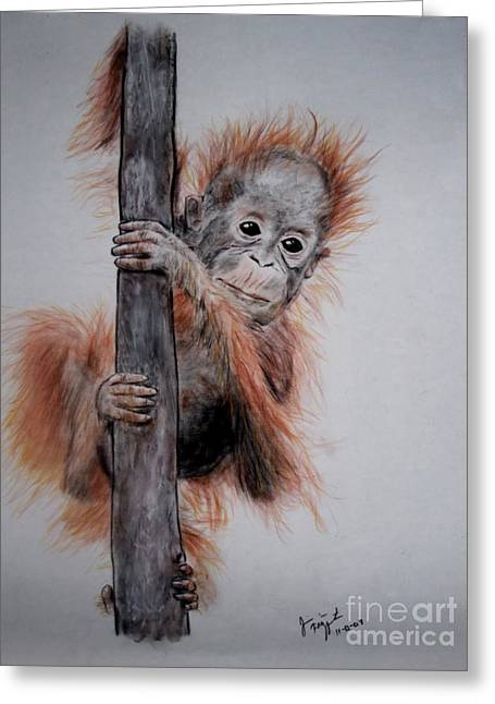 Full Body Drawings Greeting Cards - Baby Orangutan  Greeting Card by Jim Fitzpatrick