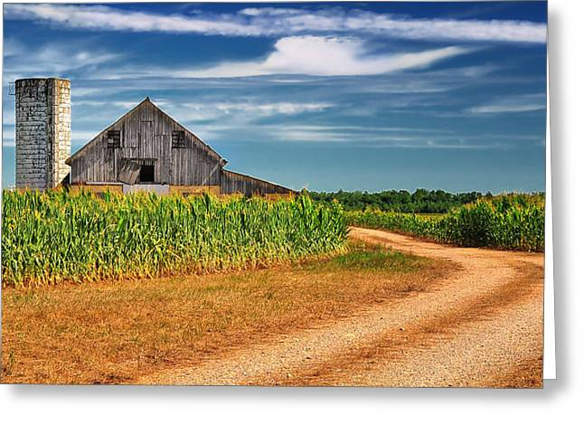 Country Dirt Roads Greeting Cards - Back Country Road Greeting Card by Brian Mollenkopf