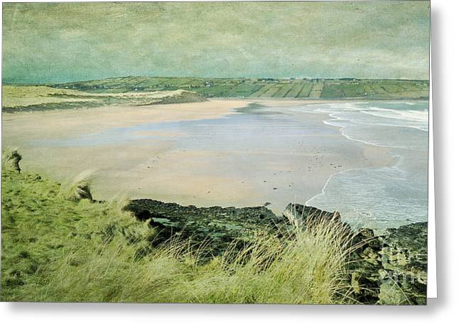 Seascape. Headland Greeting Cards - Back Strand 2 Greeting Card by Marion Galt