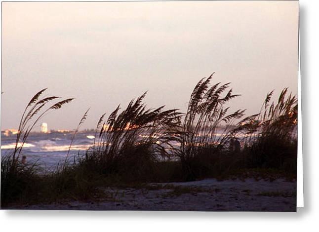Beach Greeting Cards - Back to the shores Greeting Card by Susanne Van Hulst