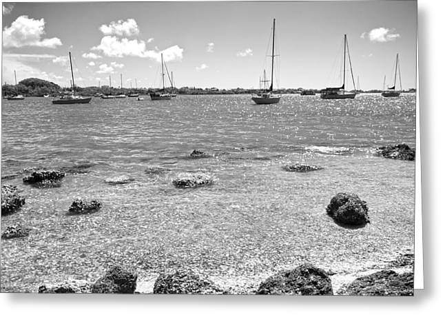 Bayfront Greeting Cards - Background Sailboats Greeting Card by Betsy C  Knapp