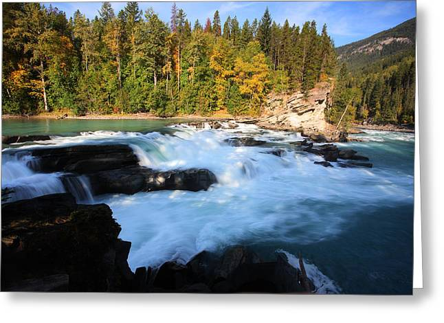 Fall River Scenes Digital Greeting Cards - Backguard Falls on Fraser River in British Columbia Greeting Card by Mark Duffy