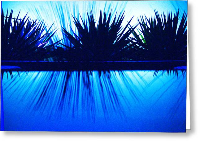 Blue Photographs Greeting Cards - Backlit by Blue Greeting Card by Richard Henne