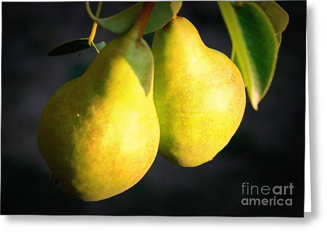 Backyard Garden Series - Two Pears Greeting Card by Carol Groenen