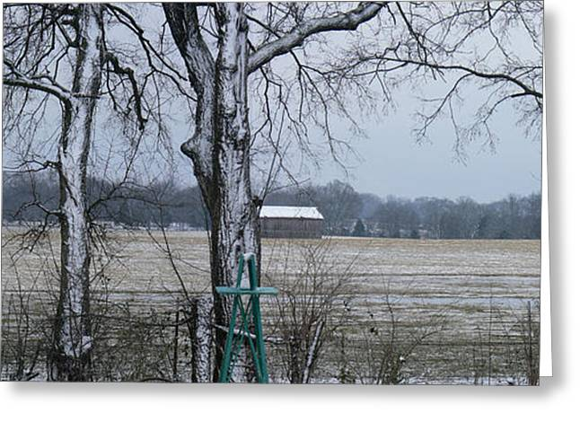 Tn Greeting Cards - Backyard Panoramic Greeting Card by EricaMaxine  Price