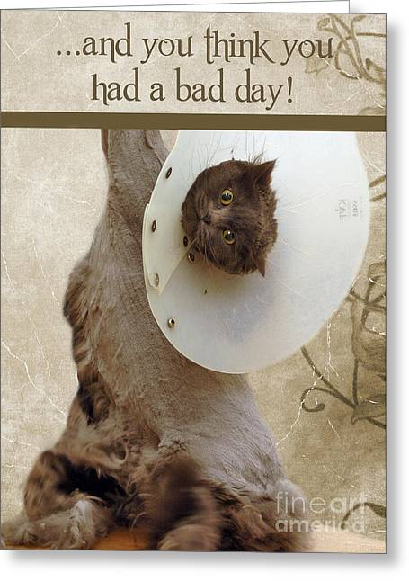 Groomer Greeting Cards - Bad Day Greeting Card by Joann Vitali