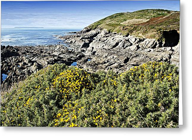 Croyde Greeting Cards - Baggy Point Croyde Greeting Card by Dave Wilkinson
