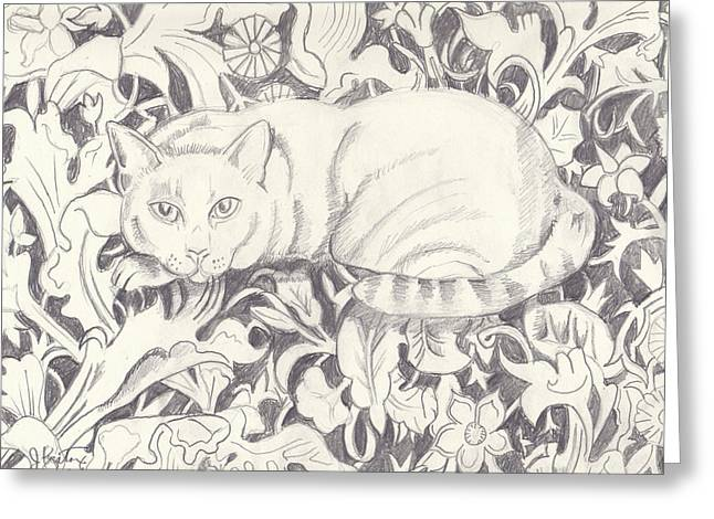 I Am Not Greeting Cards - Bailey The Cat Greeting Card by John Keaton