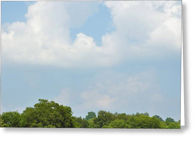 Bailing Greeting Card by Jan Amiss Photography