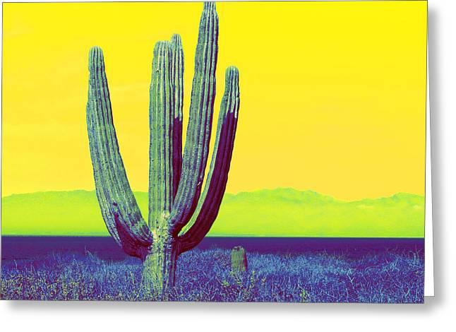 Ventana Greeting Cards - Baja Greeting Card by Christian Heeb