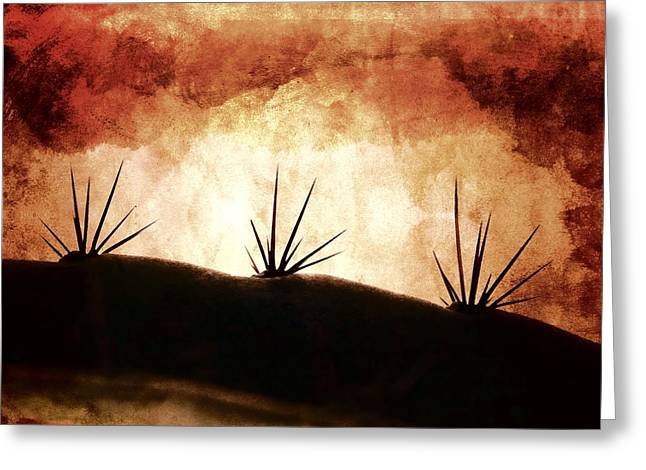 Desert Photographs Greeting Cards - Baja Light Shimmer Greeting Card by Carol Leigh