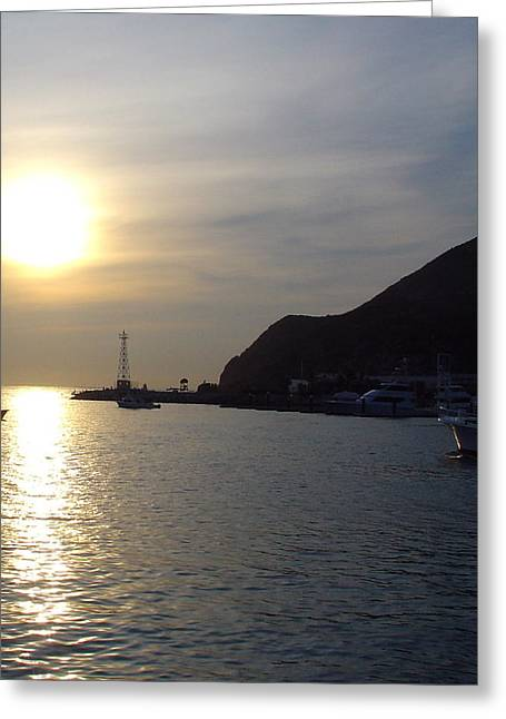 Sea Sports Greeting Cards - Baja Sun Greeting Card by Karon Melillo DeVega