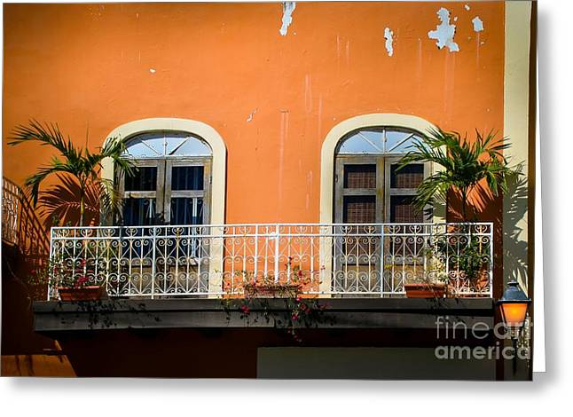 Screen Doors Greeting Cards - Balcony With Palms Greeting Card by Perry Webster