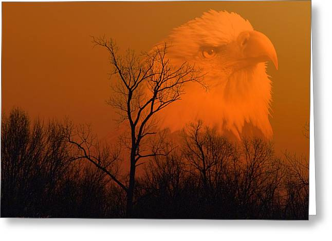 Wildlife Digital Art Greeting Cards - Bald Eagle Spirit Of Reelfoot Lake Greeting Card by J Larry Walker