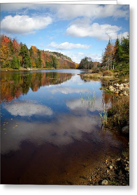 Aderondacks Greeting Cards - Bald Mountain Pond in the Adirondacks Greeting Card by David Patterson
