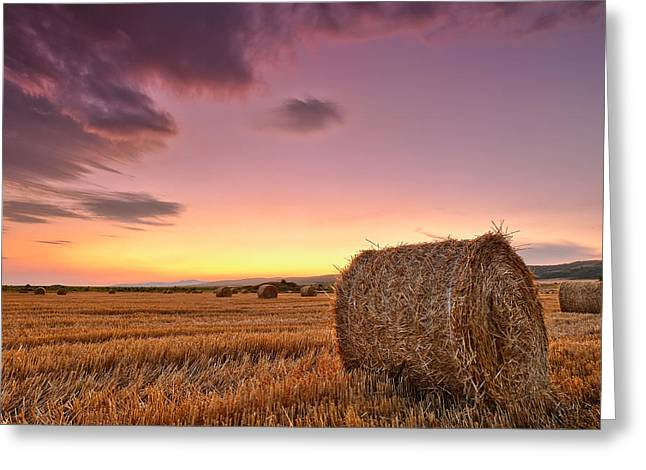 Bale Greeting Cards - Bales At Twilight Greeting Card by Evgeni Dinev