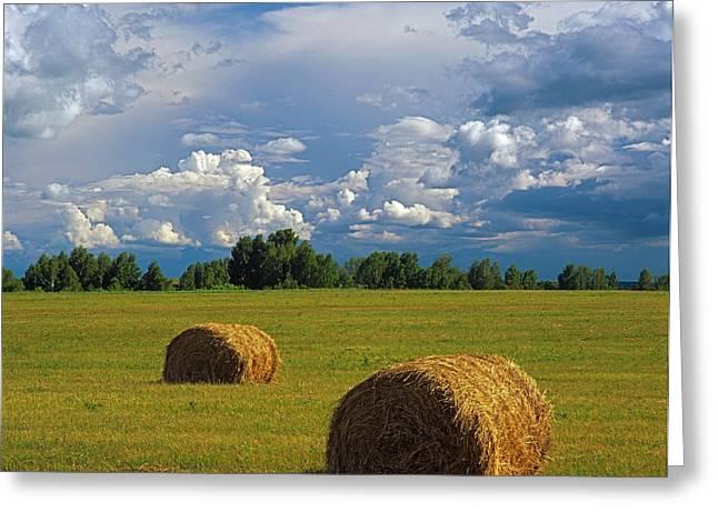 Bales of hay Greeting Card by Elena Filatova