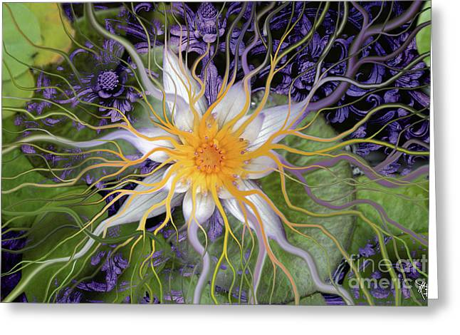 Lotus Blossoms Greeting Cards - Bali Dream Flower Greeting Card by Christopher Beikmann