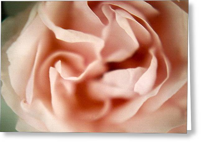 Claudia Smaletz Greeting Cards - Ballerina Pink Greeting Card by Claudia Smaletz