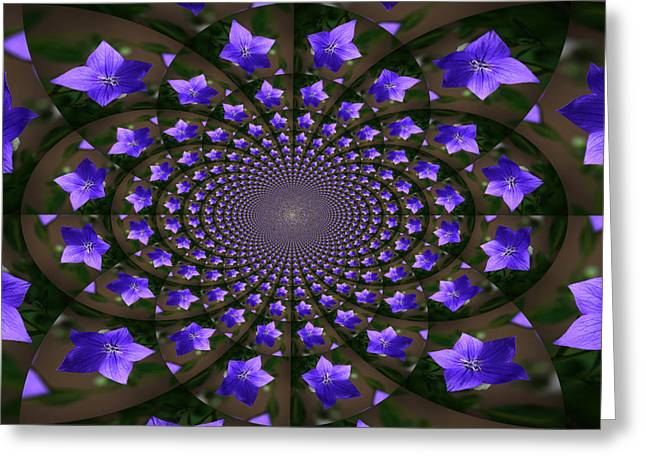 Balloon Flower Greeting Cards - Balloon Flower Kaleidoscope Greeting Card by Teresa Mucha