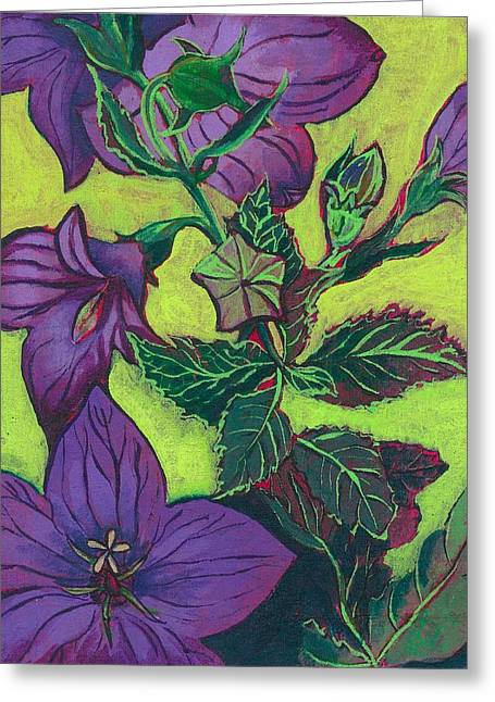 Balloon Flower Paintings Greeting Cards - Balloon Flowers Greeting Card by Julia Garnett