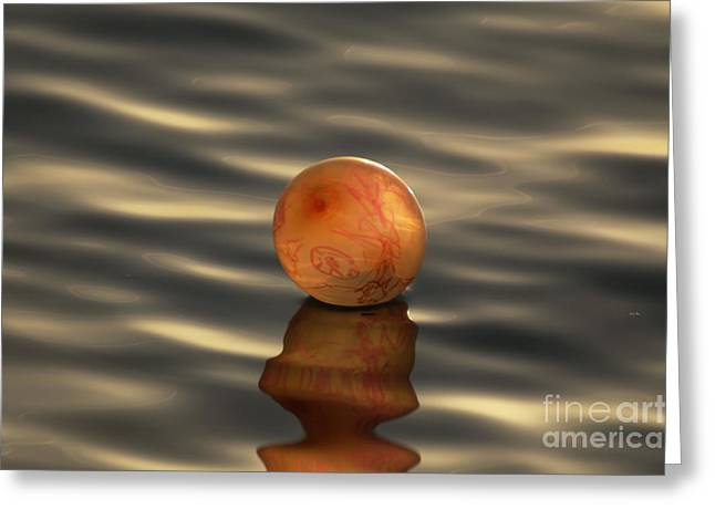 Best Sellers -  - Sweating Photographs Greeting Cards - Balloons on the water Greeting Card by Odon Czintos