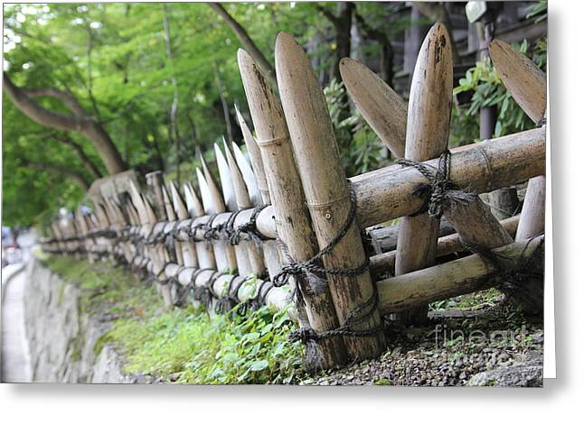 Bamboo Fence Greeting Cards - Bamboo and String Greeting Card by James Knights
