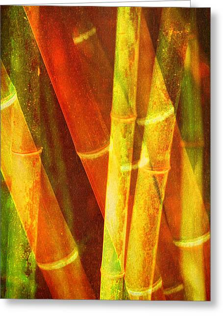 Photo Montage Greeting Cards - Bamboo Greeting Card by Bonnie Bruno
