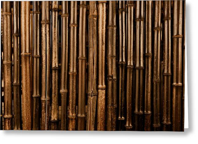 Recently Sold -  - Bamboo Fence Greeting Cards - Bamboo Dark Background Greeting Card by Brandon Bourdages