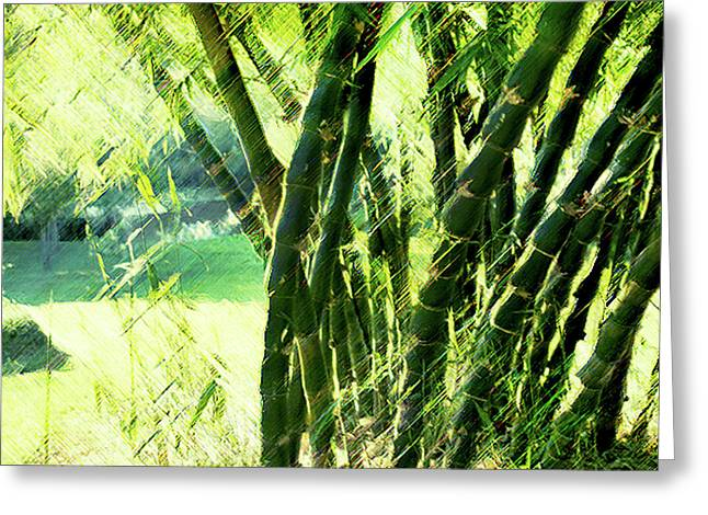 Bamboo Delight Greeting Card by Linde Townsend