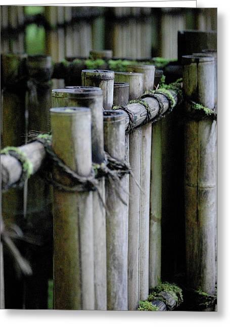Bamboo Fence Greeting Cards - Bamboo fence Greeting Card by Samantha Kimble