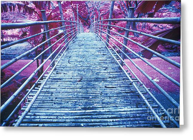 Bamboo Foot Bridge Greeting Card by Will and Deni McIntyre