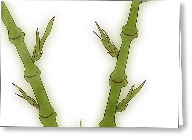 Bamboo Greeting Card by Frank Tschakert