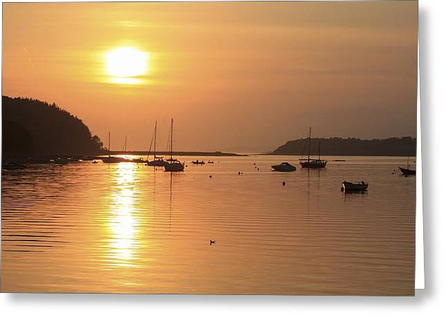 Sailboats In Harbor Photographs Greeting Cards - Bantry Bay, Bantry, Co Cork, Ireland Greeting Card by Peter Zoeller