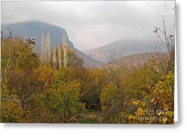 Issam Hajjar Greeting Cards - Barada valley in fall Greeting Card by Issam Hajjar