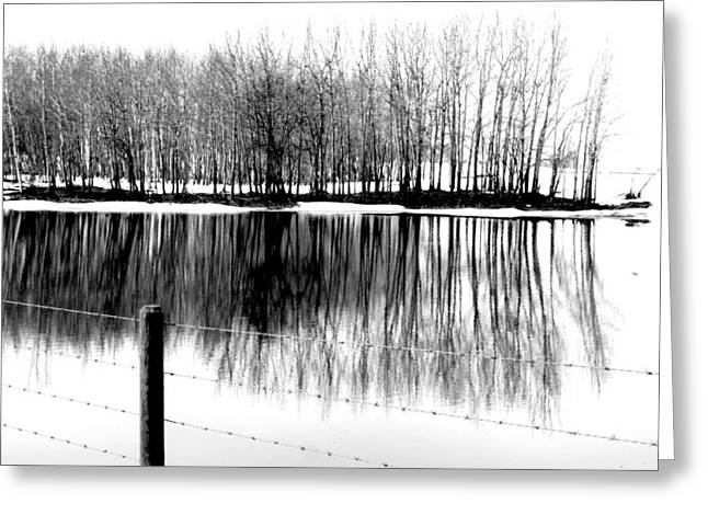 Edmonton Photographer Greeting Cards - Barbed Water Greeting Card by Jerry Cordeiro