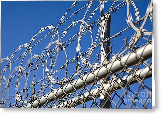 Barbed Wire And Chain Link Fence Greeting Card by Paul Edmondson