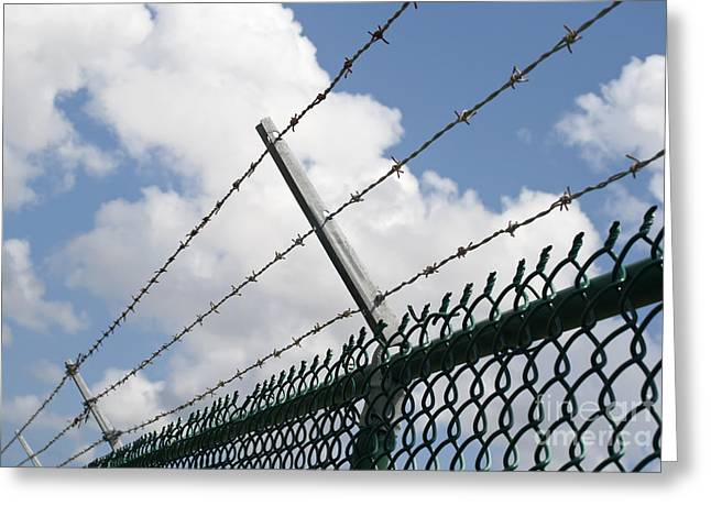 Enclosed Greeting Cards - Barbed wire Greeting Card by Blink Images