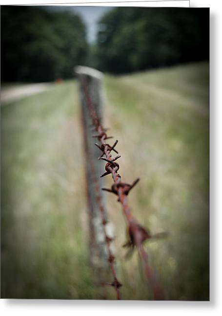 Swift Family Greeting Cards - Barbed Wire Fence Greeting Card by Swift Family