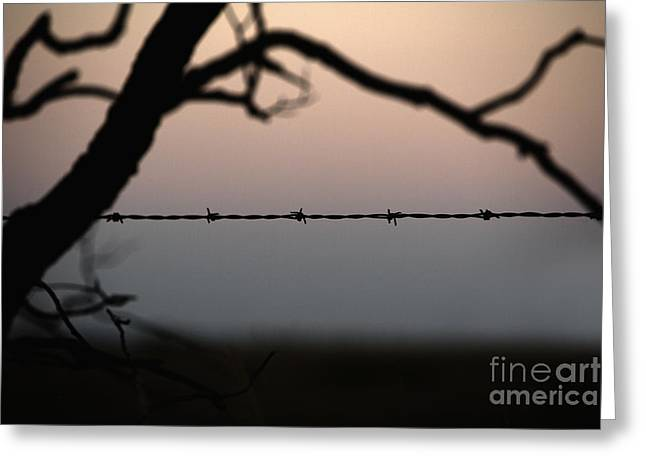 Barbed Wire Fences Greeting Cards - Barbed Wire on Prairie Greeting Card by Will & Deni McIntyre