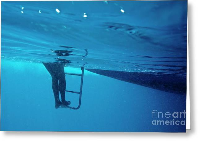 Boats In Water Greeting Cards - Bare legs descending underwater from the ladder of a boat Greeting Card by Sami Sarkis