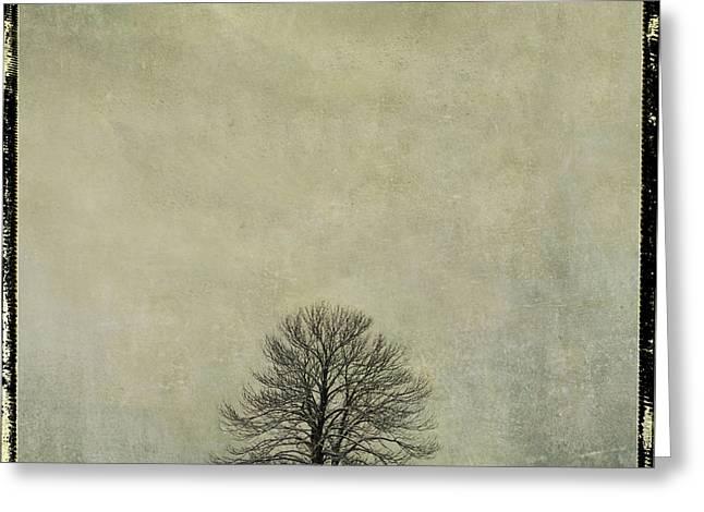 Separately Greeting Cards - Bare tree. vintage-look. Auvergne. France Greeting Card by Bernard Jaubert