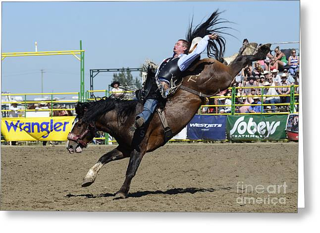 Western Life Greeting Cards - Rodeo Bareback Riding Greeting Card by Bob Christopher