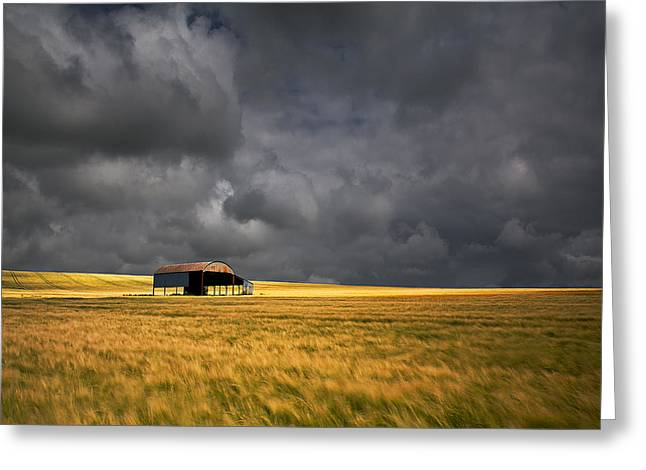 Barn And Barley Greeting Card by Kris Dutson
