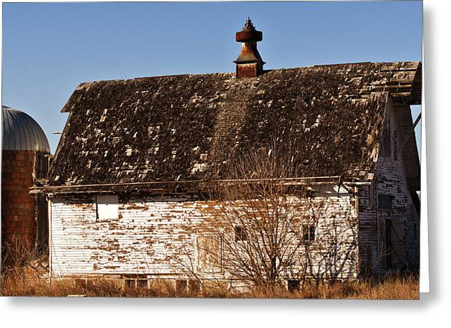 Barn And Silo Greeting Card by Edward Peterson