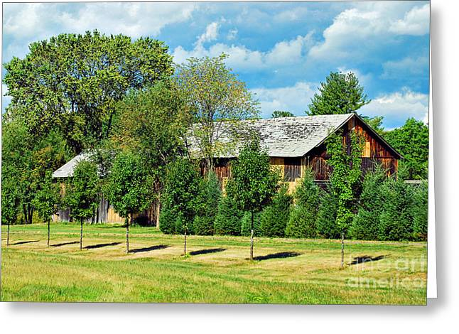 Southwick Greeting Cards - Barn And Trees Greeting Card by HD Connelly